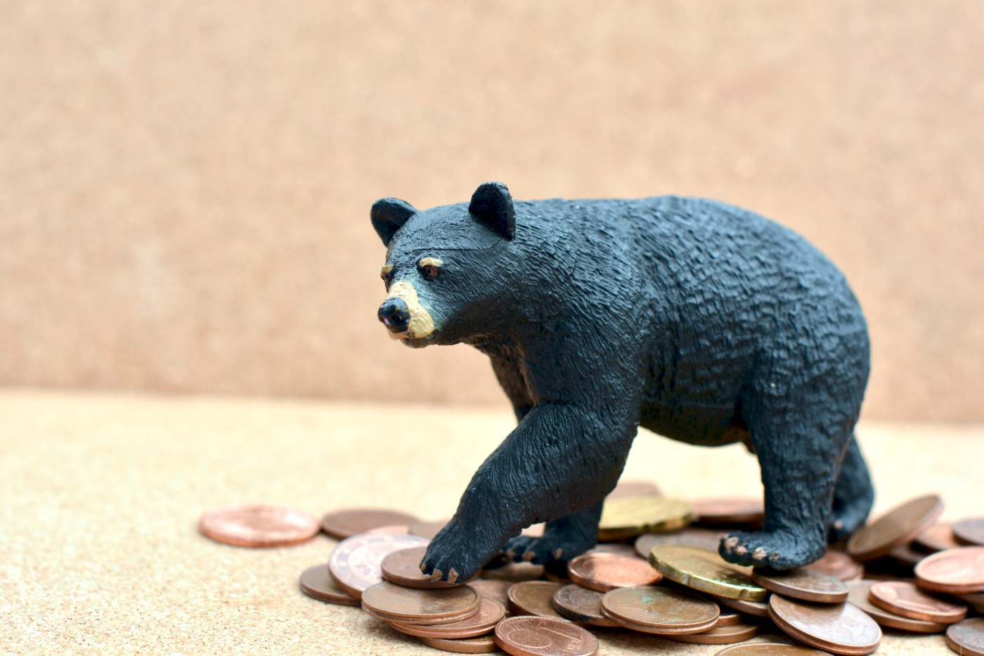 https://tickertapecdn.tdameritrade.com/assets/images/pages/md/Investing in a bear market