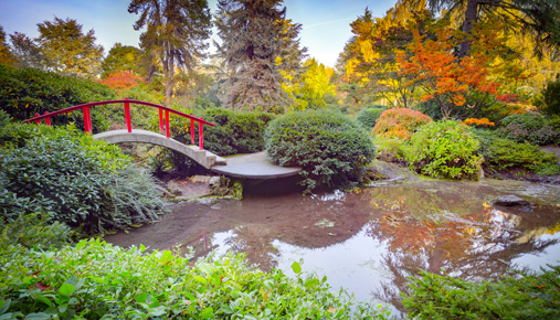https://tickertapecdn.tdameritrade.com/assets/images/pages/md/Japanese garden scene: How getting your head in a calm place each morning can benefit your trading