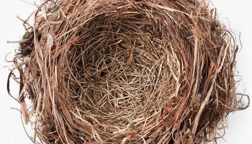https://tickertapecdn.tdameritrade.com/assets/images/pages/md/Empty nest: Tips for minimizing and/or moving