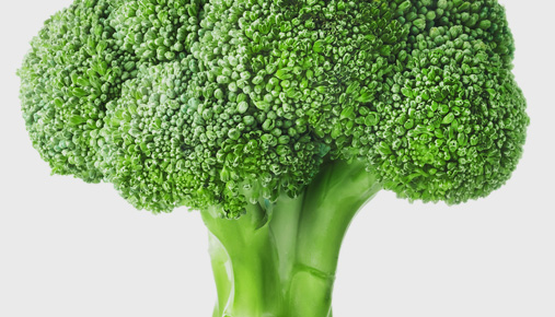 https://tickertapecdn.tdameritrade.com/assets/images/pages/md/Broccoli: What's good for the body is good for the trader. Developing healthy habits to support trading success
