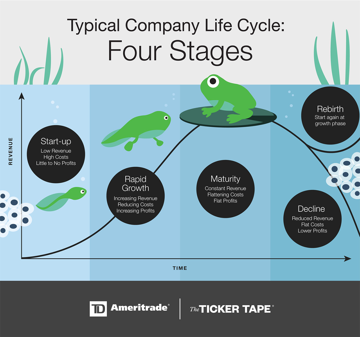 Company Life Cycle: Four Stages