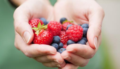 https://tickertapecdn.tdameritrade.com/assets/images/pages/md/Fruitful Harvest from Dividend Garden