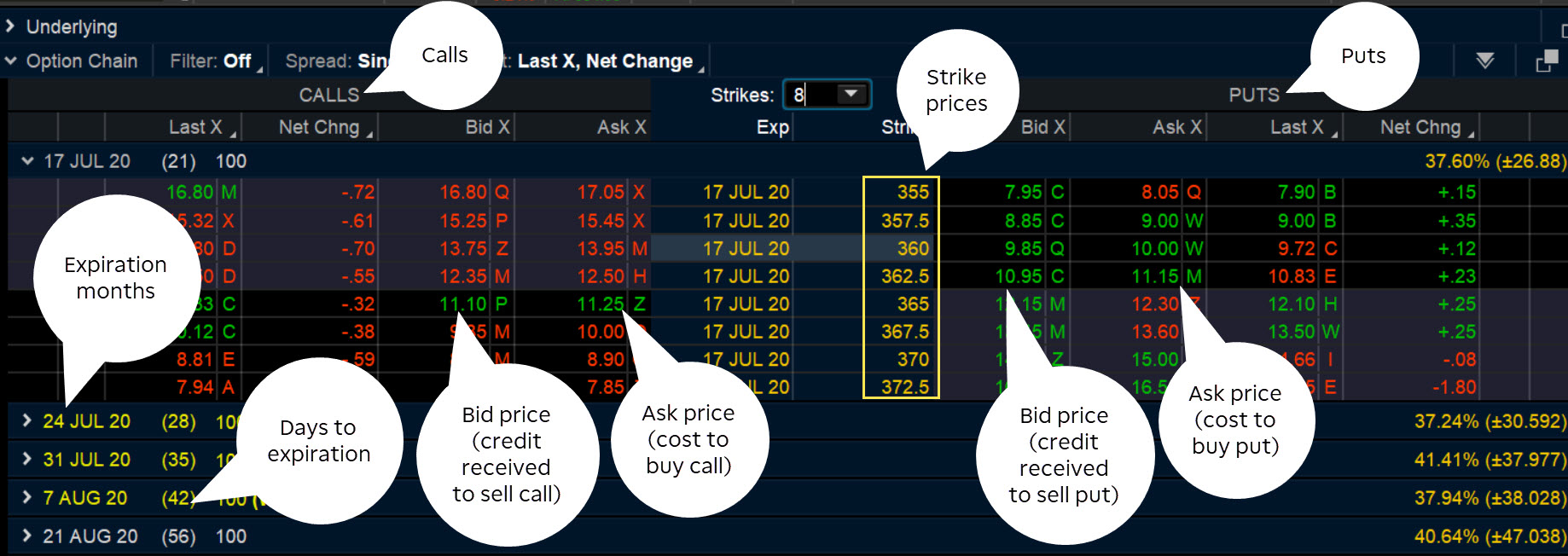 Option chain of puts and calls on thinkorswim