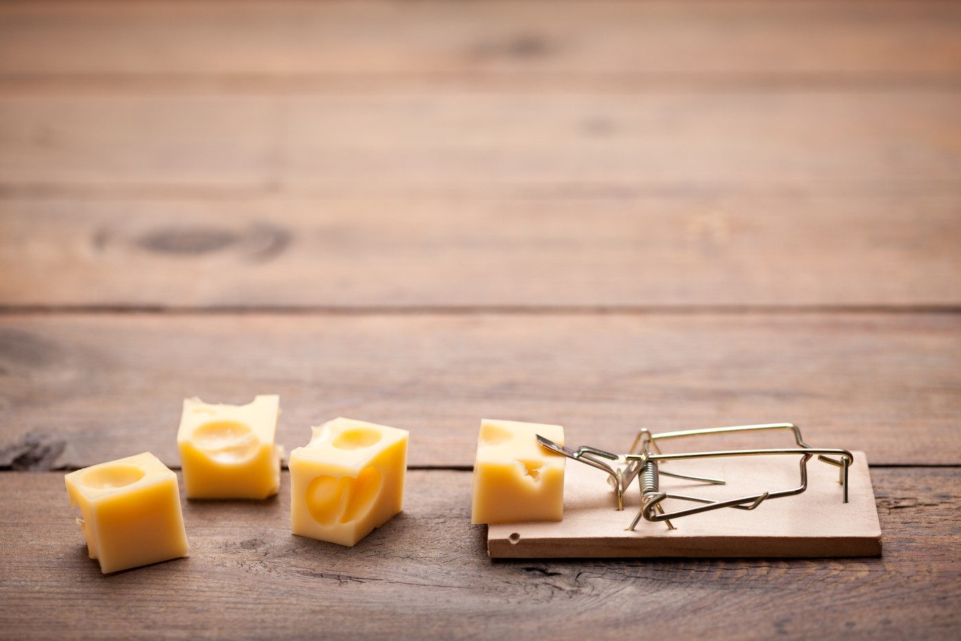 https://tickertapecdn.tdameritrade.com/assets/images/pages/md/Mousetrap with cheese: Risk vs. reward in investment returns