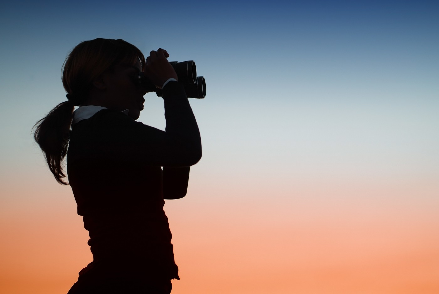 https://tickertapecdn.tdameritrade.com/assets/images/pages/md/Business woman looking through binoculars: How to spot a new volatility regime