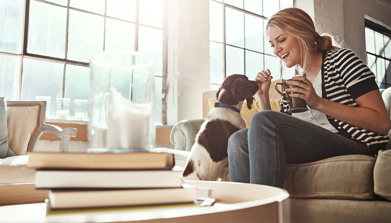 Fur babies, millennials, and spending on pet products