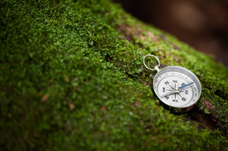 compass in the woods: traditional vs. Roth IRA for retirement
